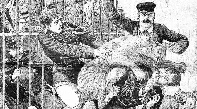 Foglio n°2 – No al circo con gli animali! [PDF]